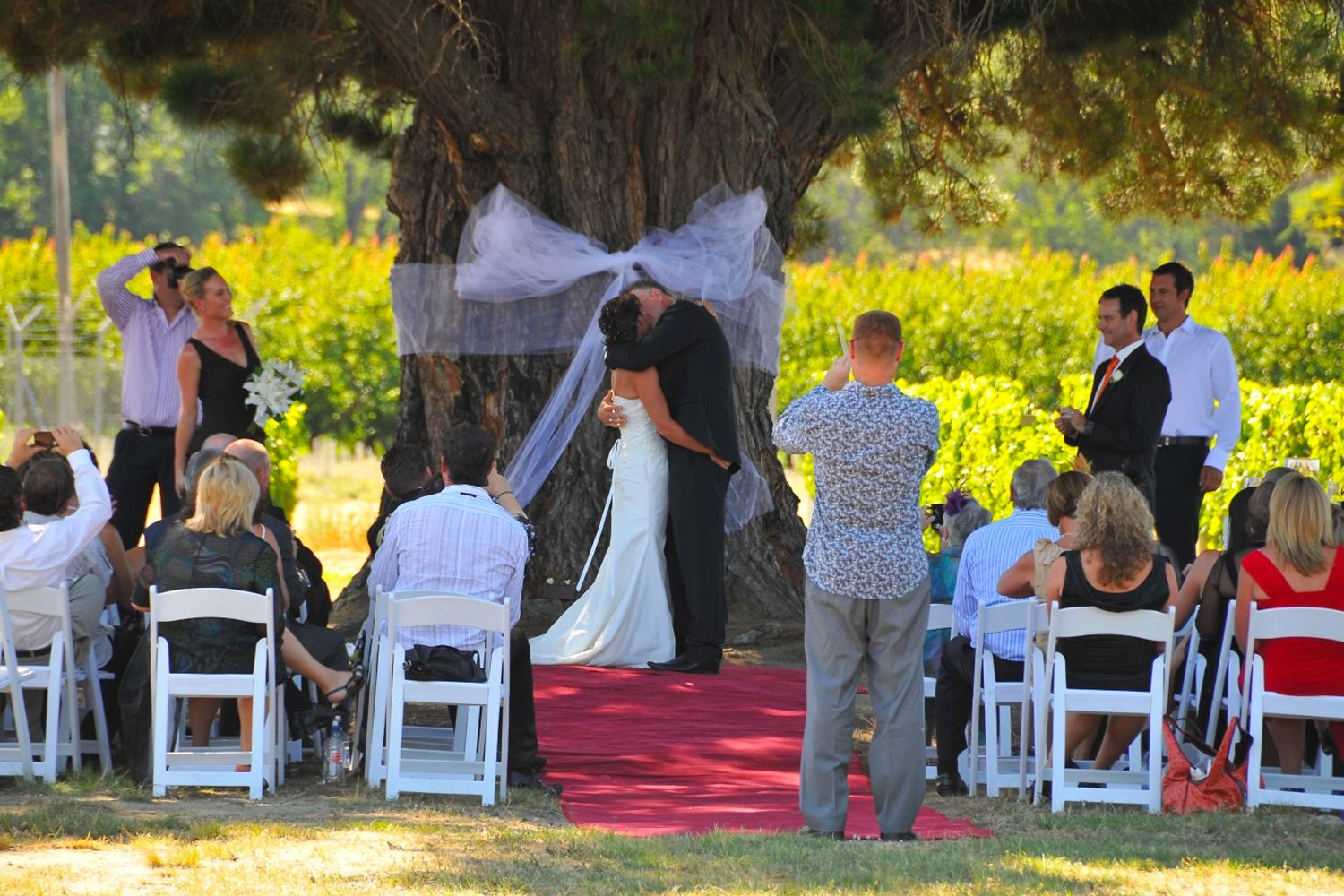 Wedding-under-the-wooing-tree